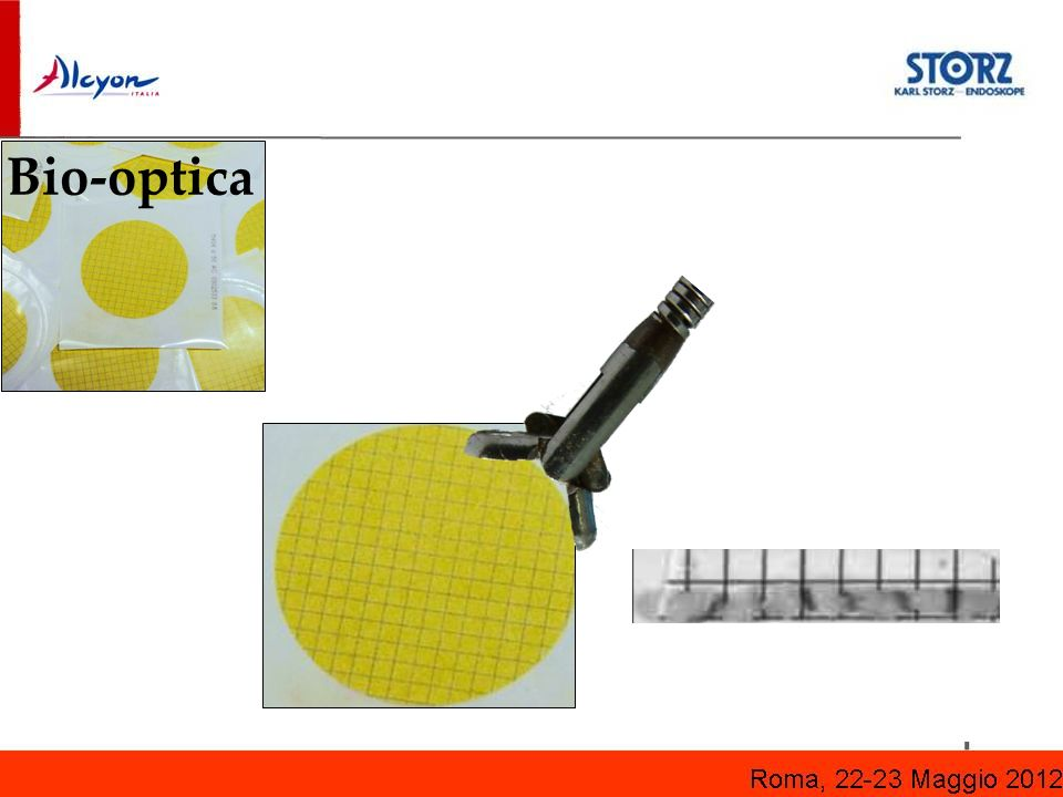 Bio-optica