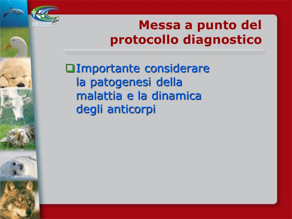 Messa a punto del protocollo diagnostico