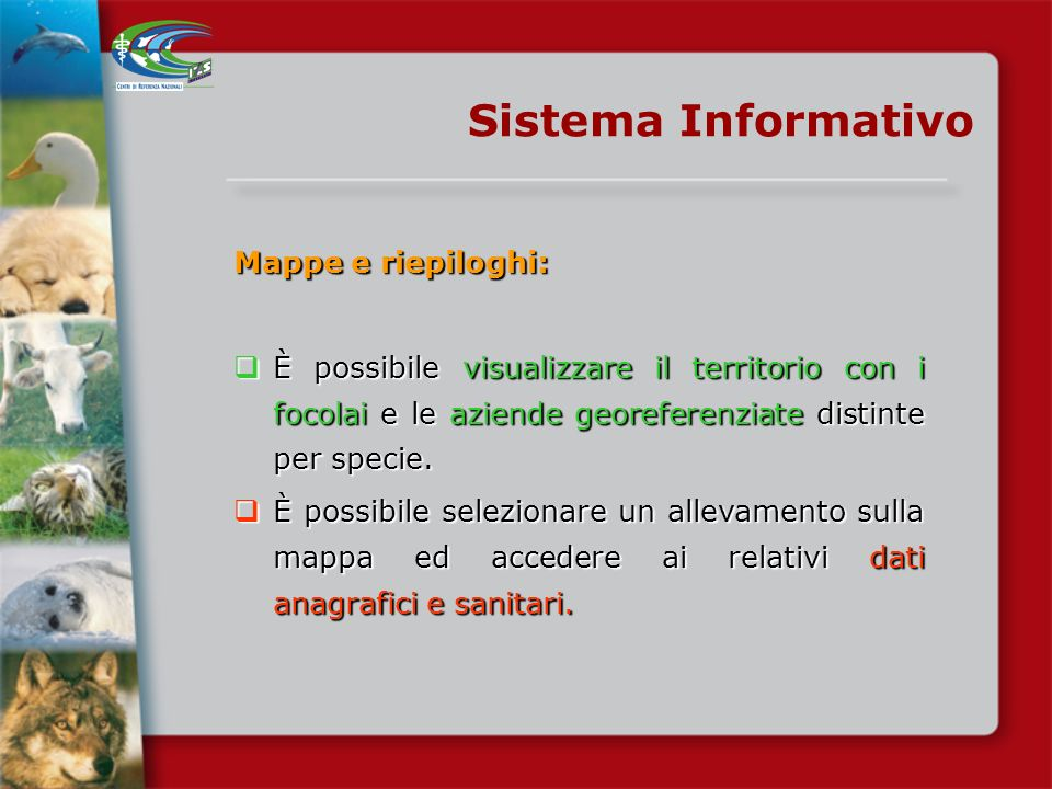 Sistema Informativo Mappe e riepiloghi: