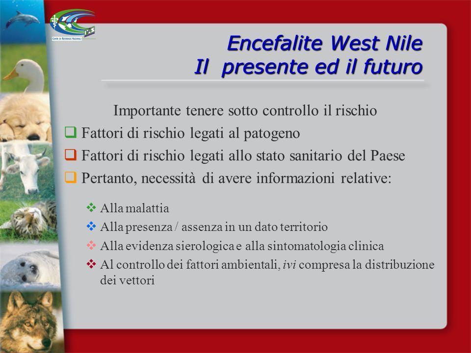 Encefalite West Nile Il presente ed il futuro