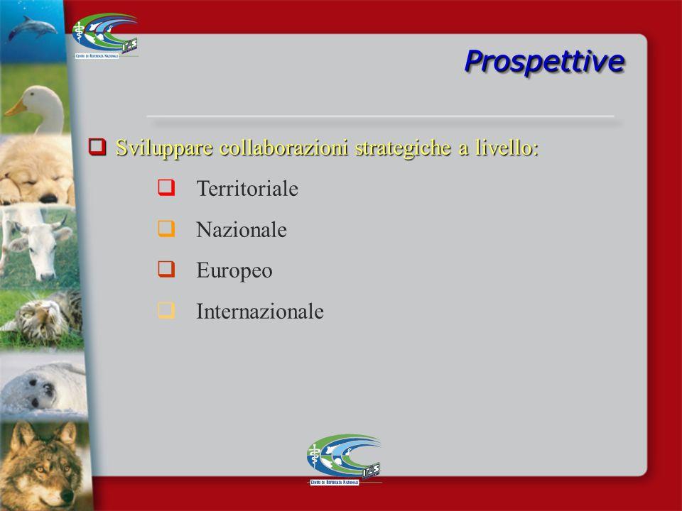 Prospettive Sviluppare collaborazioni strategiche a livello: