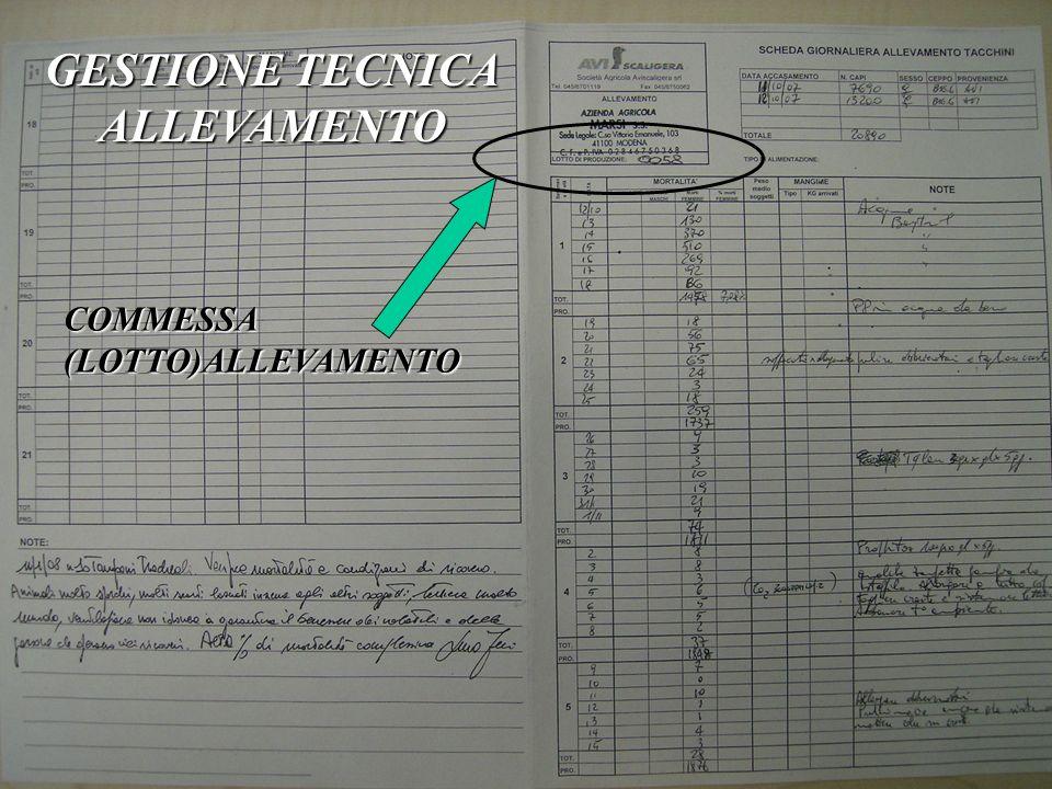 GESTIONE TECNICA ALLEVAMENTO