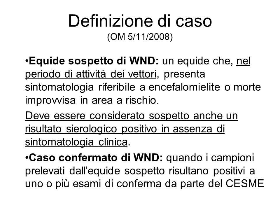 Definizione di caso (OM 5/11/2008)