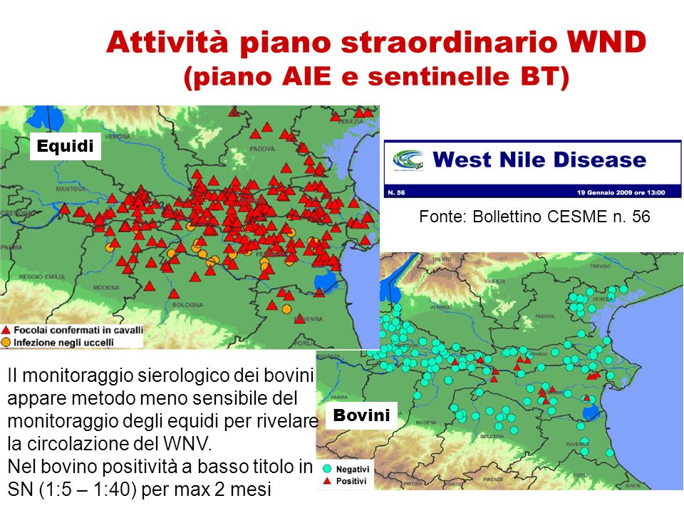 Attività piano straordinario WND (piano AIE e sentinelle BT)