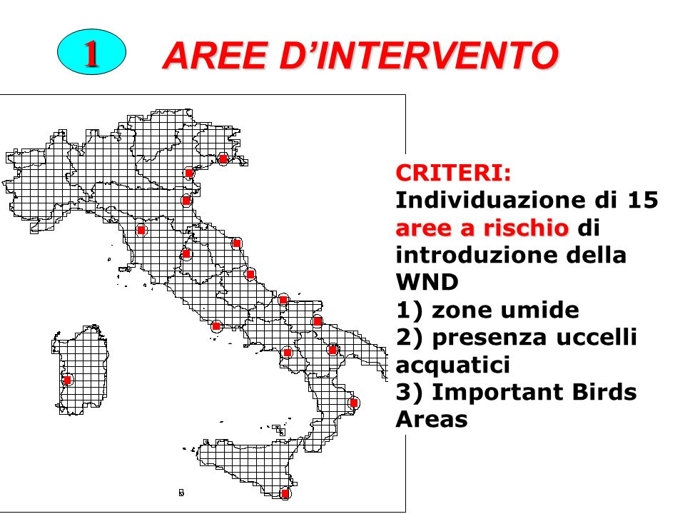 AREE D'INTERVENTO 1 CRITERI: