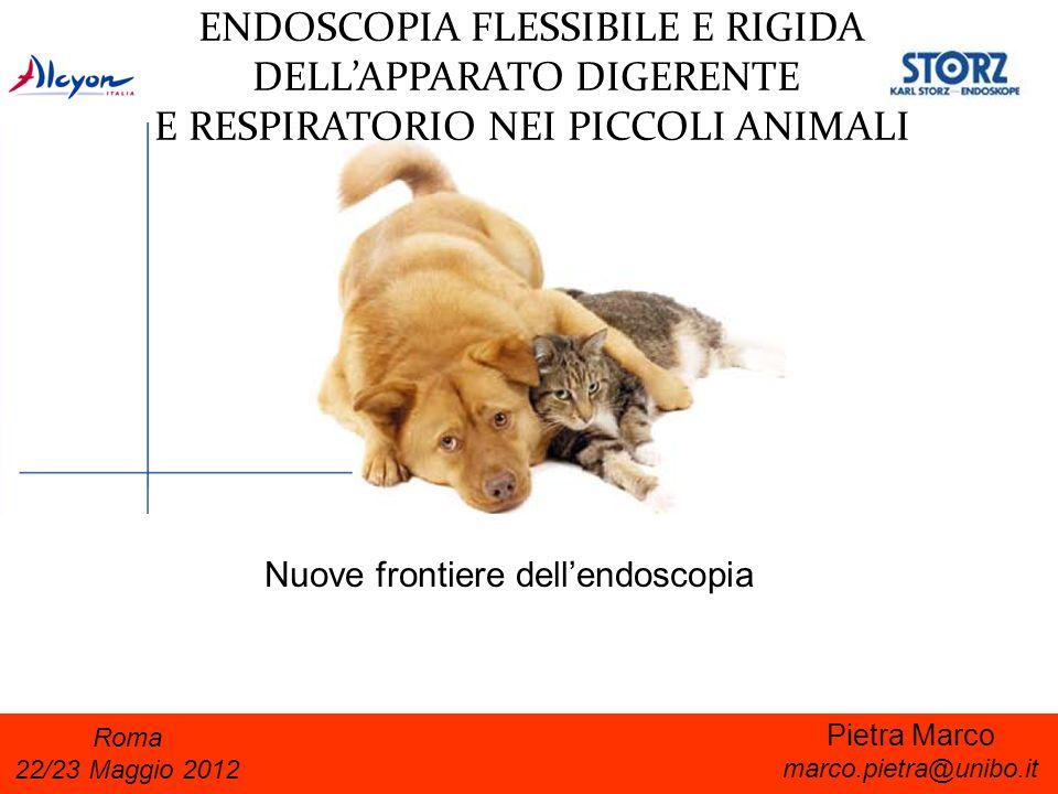 ENDOSCOPIA FLESSIBILE E RIGIDA DELL'APPARATO DIGERENTE