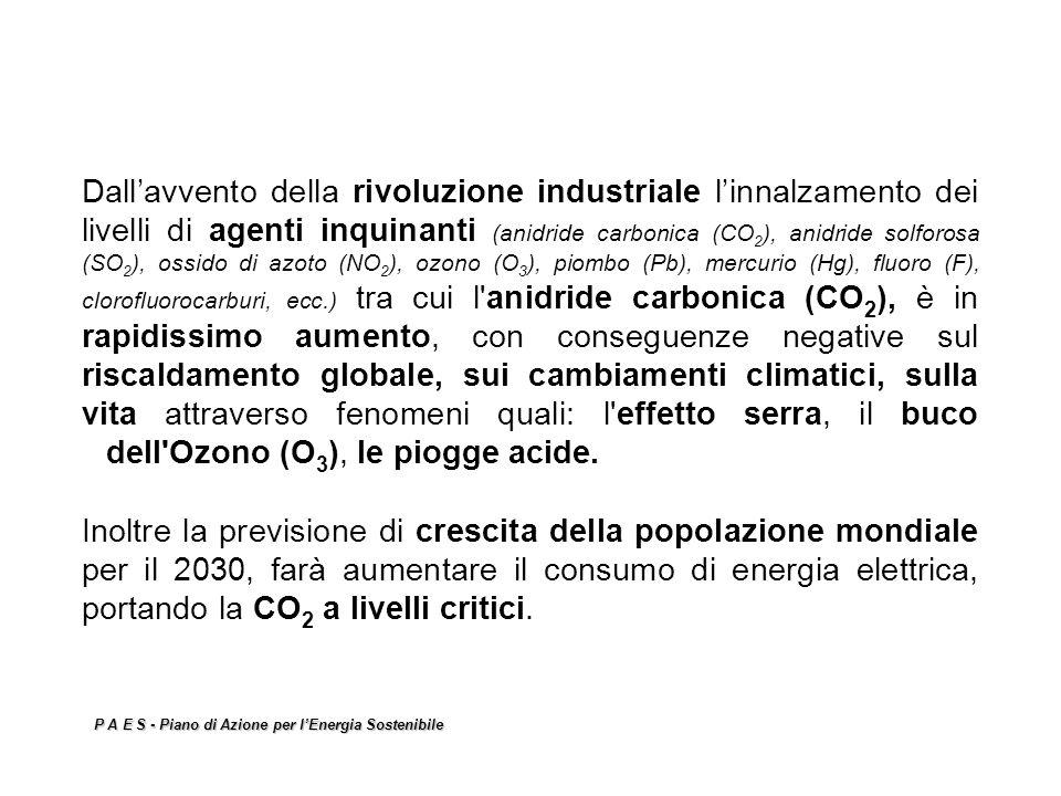 Dall'avvento della rivoluzione industriale l'innalzamento dei livelli di agenti inquinanti (anidride carbonica (CO2), anidride solforosa (SO2), ossido di azoto (NO2), ozono (O3), piombo (Pb), mercurio (Hg), fluoro (F), clorofluorocarburi, ecc.) tra cui l anidride carbonica (CO2), è in rapidissimo aumento, con conseguenze negative sul riscaldamento globale, sui cambiamenti climatici, sulla vita attraverso fenomeni quali: l effetto serra, il buco dell Ozono (O3), le piogge acide. Inoltre la previsione di crescita della popolazione mondiale per il 2030, farà aumentare il consumo di energia elettrica, portando la CO2 a livelli critici.
