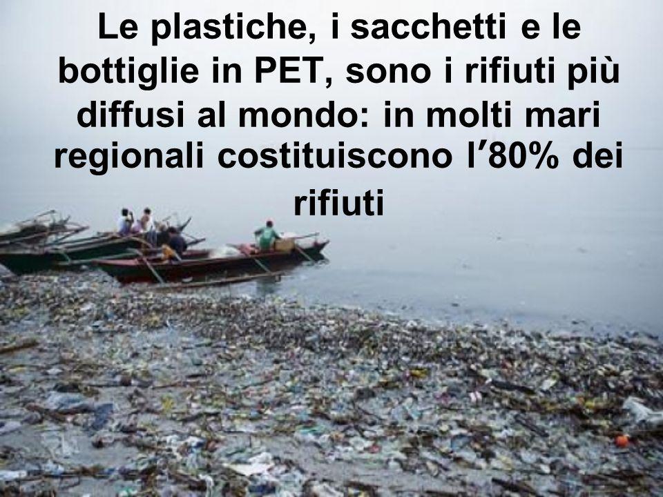 Le plastiche, i sacchetti e le bottiglie in PET, sono i rifiuti più diffusi al mondo: in molti mari regionali costituiscono l'80% dei rifiuti