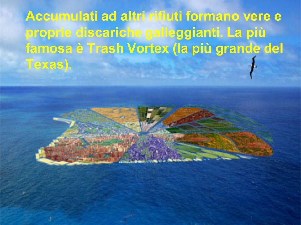 Accumulati ad altri rifiuti formano vere e proprie discariche galleggianti.