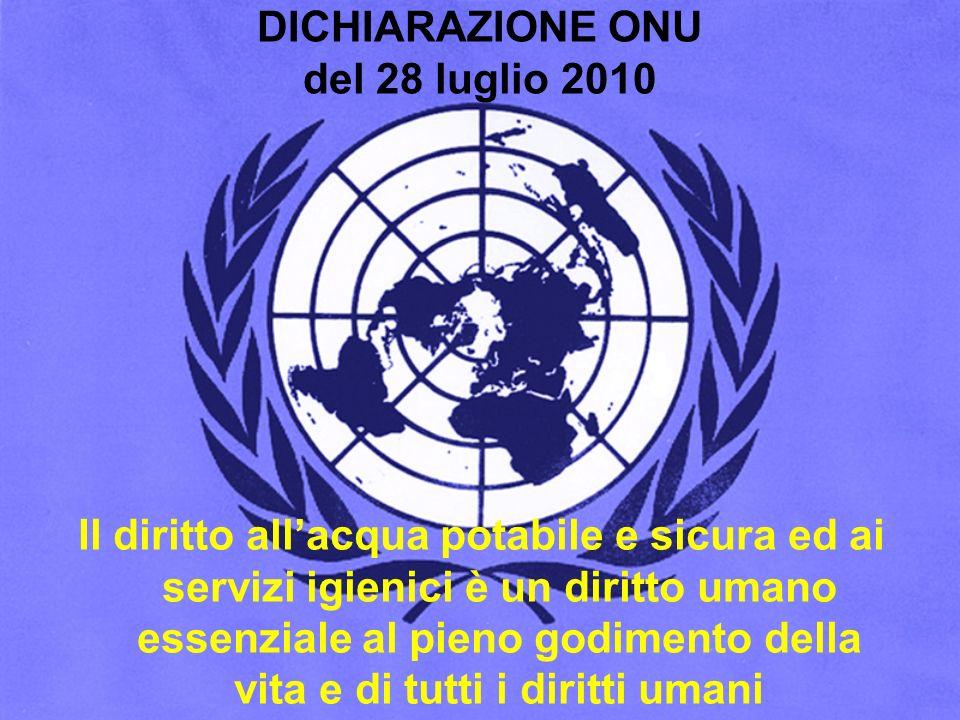 DICHIARAZIONE ONU del 28 luglio 2010