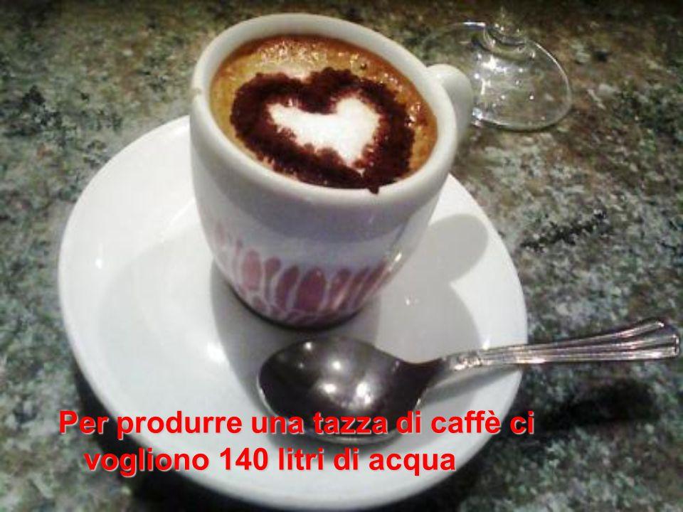 Per produrre una tazza di caffè ci vogliono 140 litri di acqua