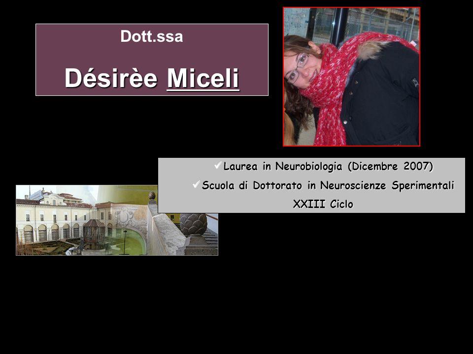 Désirèe Miceli Dott.ssa Laurea in Neurobiologia (Dicembre 2007)