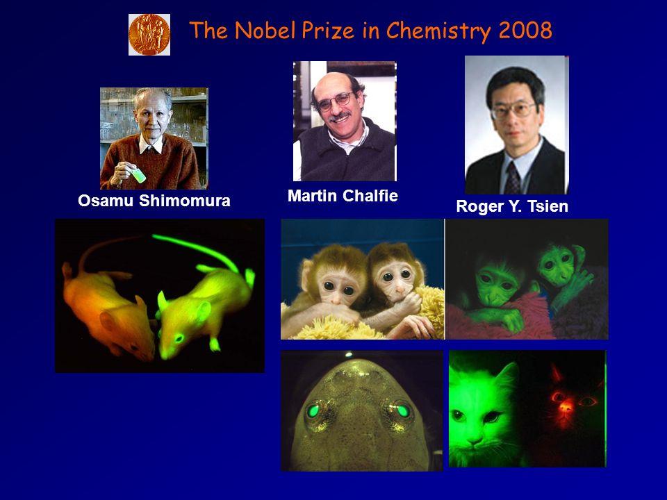 The Nobel Prize in Chemistry 2008