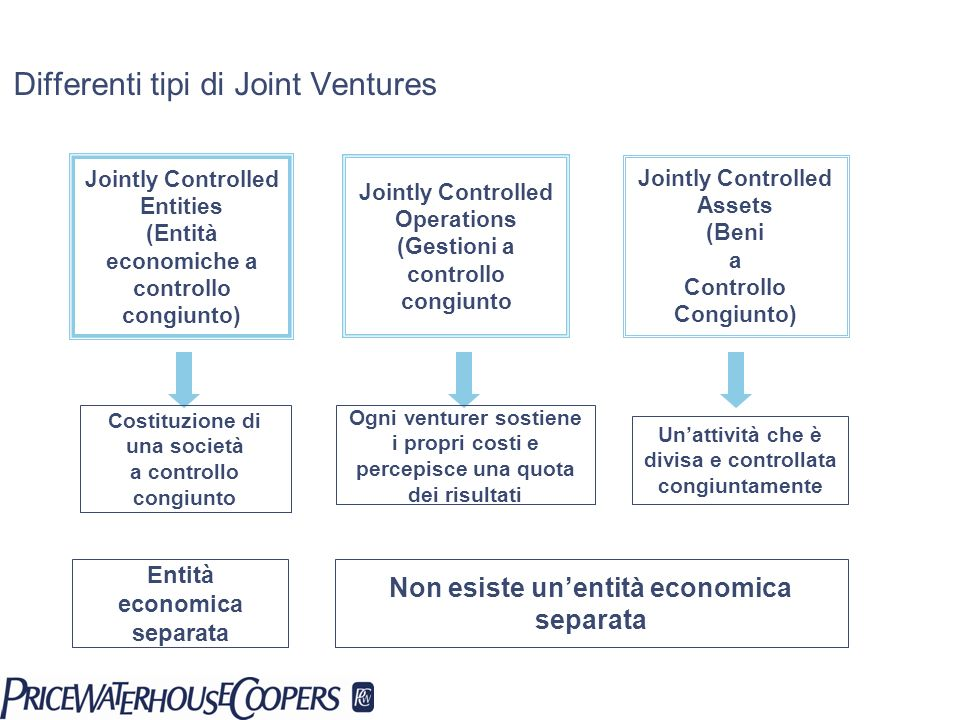 Differenti tipi di Joint Ventures