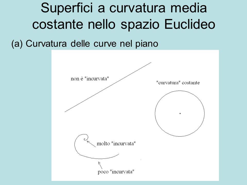 Superfici a curvatura media costante nello spazio Euclideo