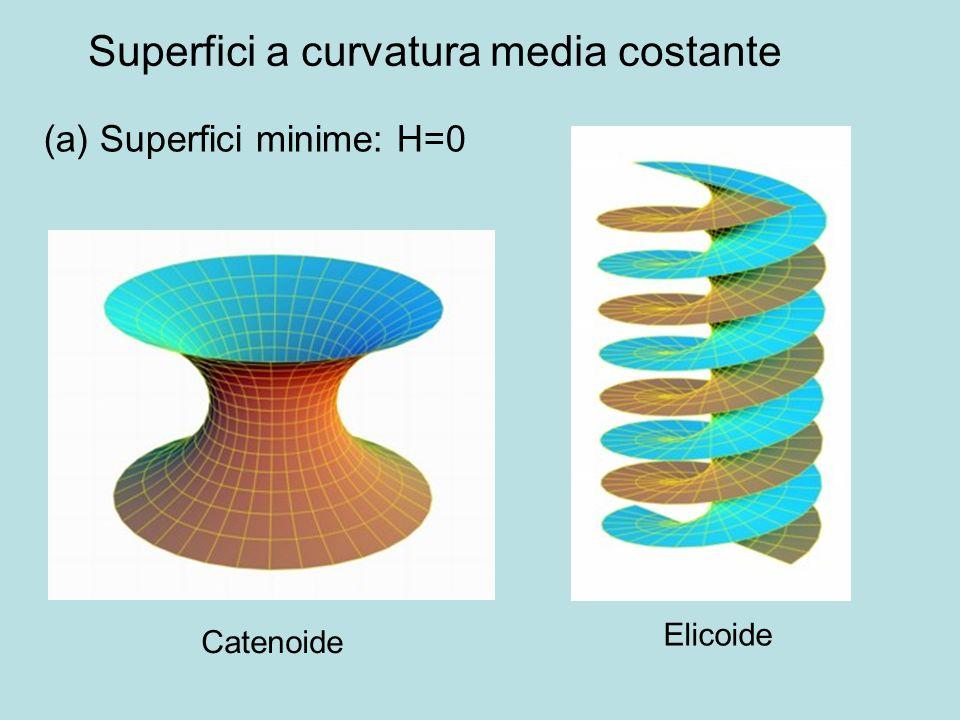 Superfici a curvatura media costante