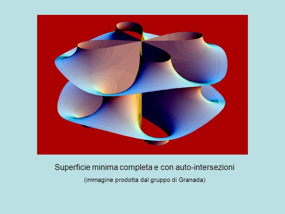 Superficie minima completa e con auto-intersezioni