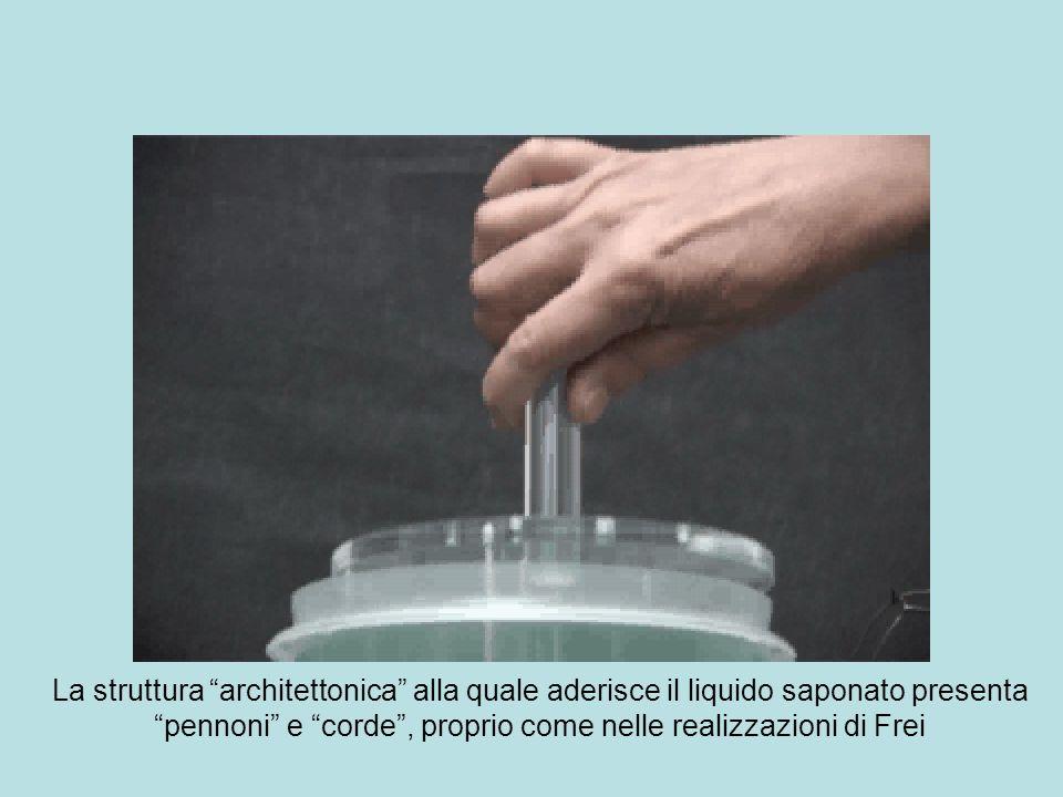 La struttura architettonica alla quale aderisce il liquido saponato presenta pennoni e corde , proprio come nelle realizzazioni di Frei