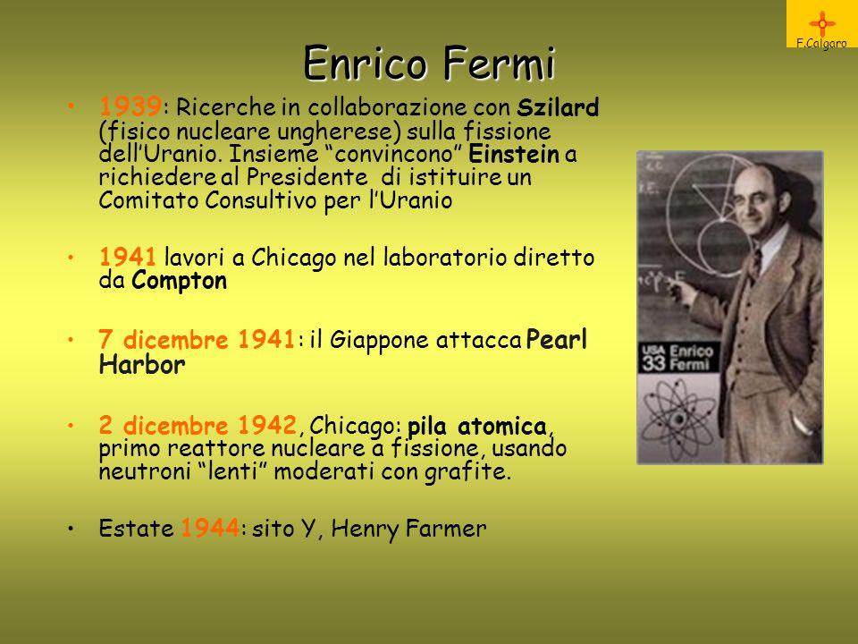 Enrico Fermi F.Calgaro.