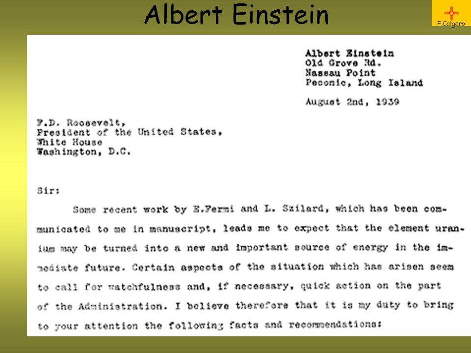 Albert Einstein F.Calgaro