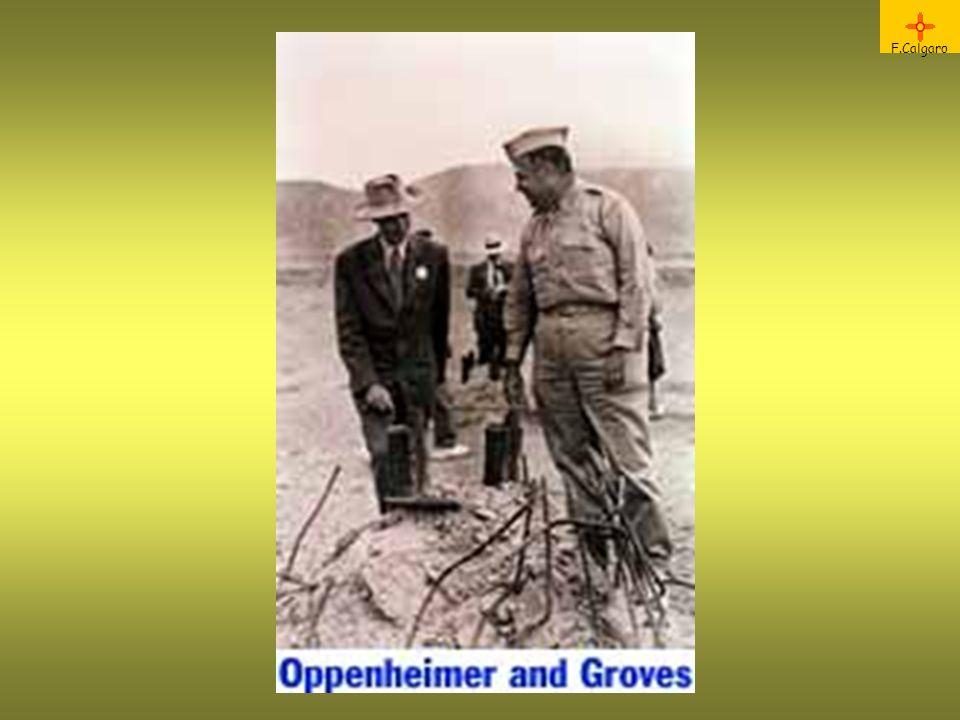 F.Calgaro Oppenheimer