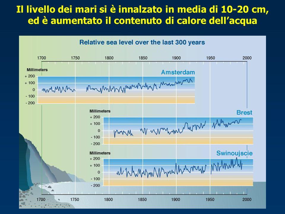 Il livello dei mari si è innalzato in media di 10-20 cm, ed è aumentato il contenuto di calore dell'acqua