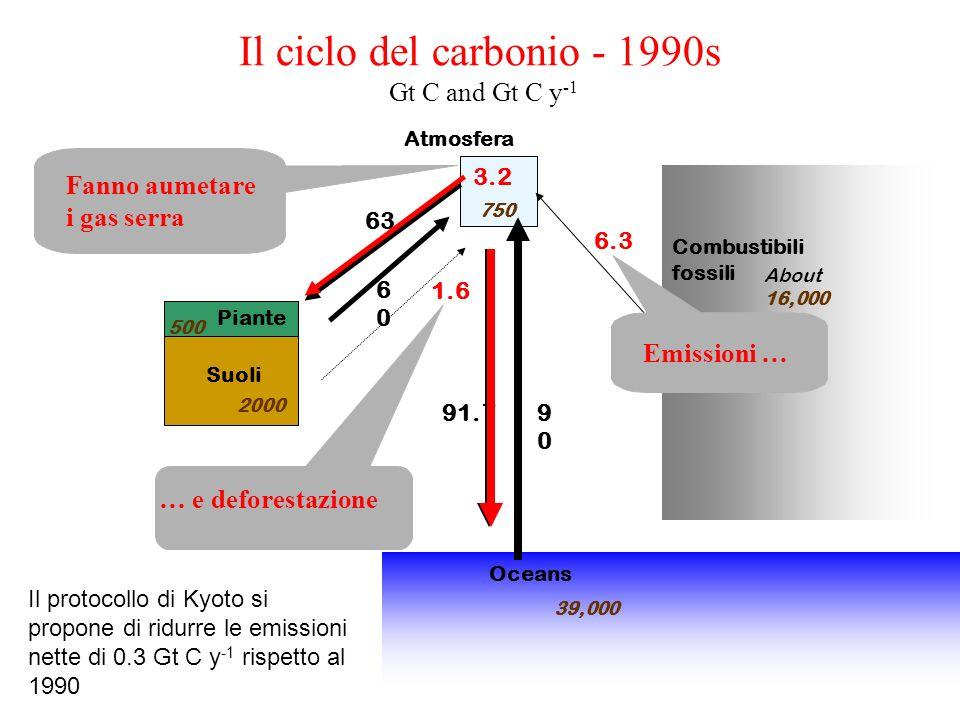 Il ciclo del carbonio - 1990s Gt C and Gt C y-1