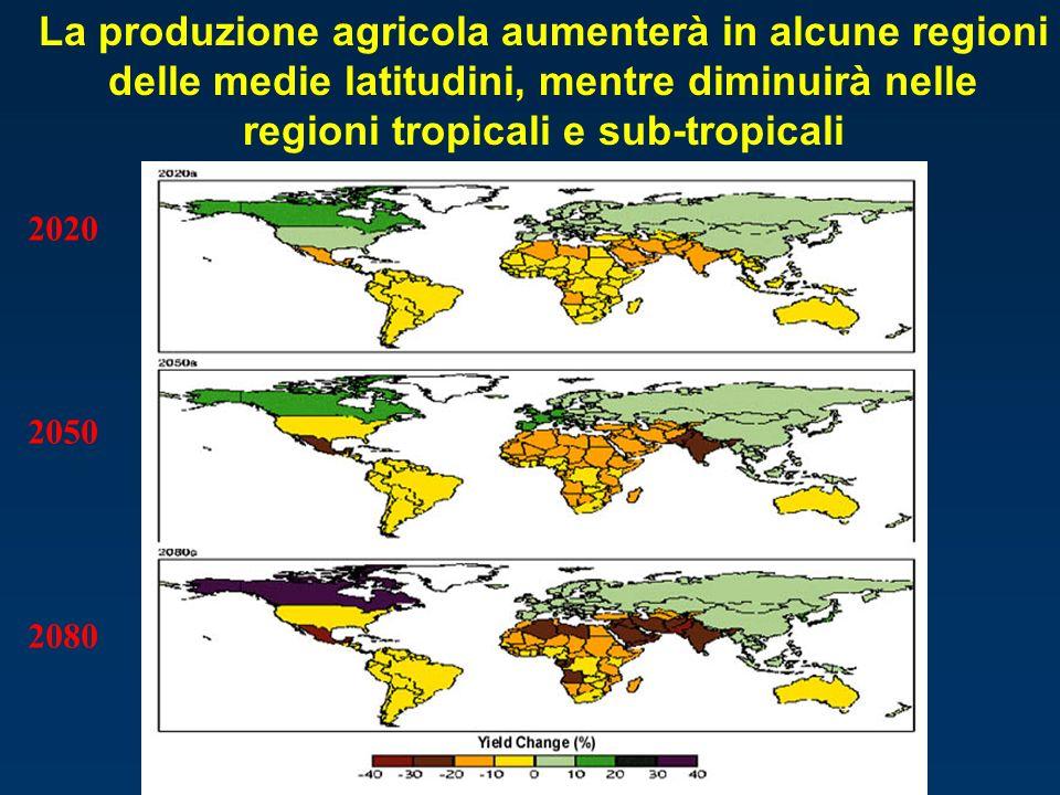 La produzione agricola aumenterà in alcune regioni delle medie latitudini, mentre diminuirà nelle regioni tropicali e sub-tropicali