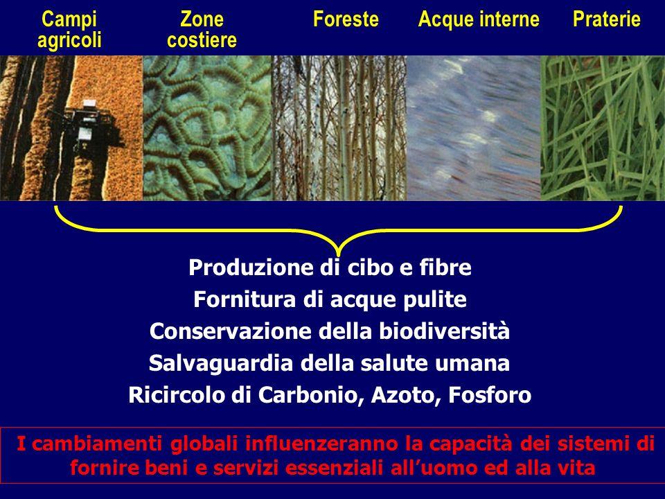 Produzione di cibo e fibre Fornitura di acque pulite