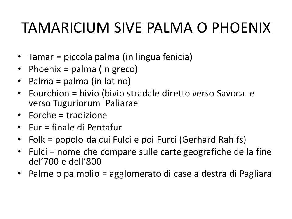 TAMARICIUM SIVE PALMA O PHOENIX