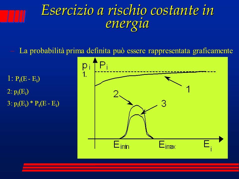 Esercizio a rischio costante in energia