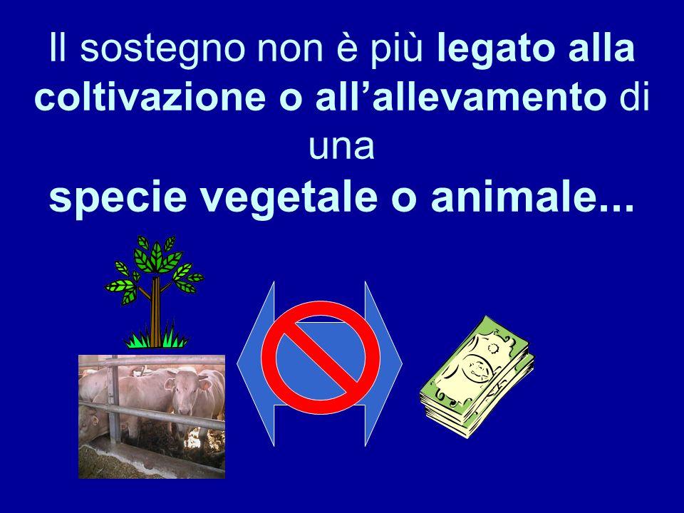 Il sostegno non è più legato alla coltivazione o all'allevamento di una specie vegetale o animale...