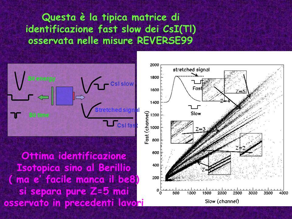 Questa è la tipica matrice di identificazione fast slow dei CsI(Tl) osservata nelle misure REVERSE99