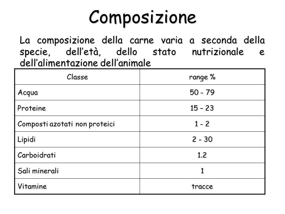 Composizione La composizione della carne varia a seconda della specie, dell'età, dello stato nutrizionale e dell'alimentazione dell'animale.