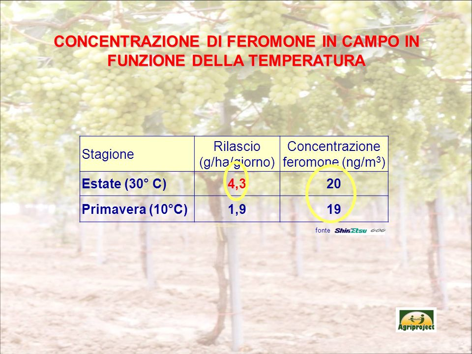 CONCENTRAZIONE DI FEROMONE IN CAMPO IN FUNZIONE DELLA TEMPERATURA