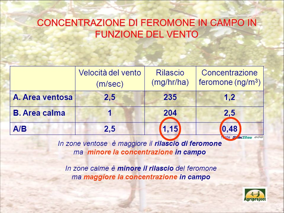 CONCENTRAZIONE DI FEROMONE IN CAMPO IN FUNZIONE DEL VENTO