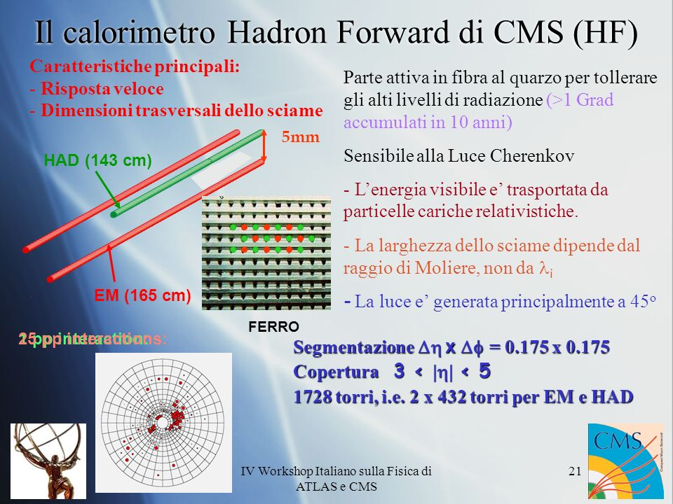 Il calorimetro Hadron Forward di CMS (HF)