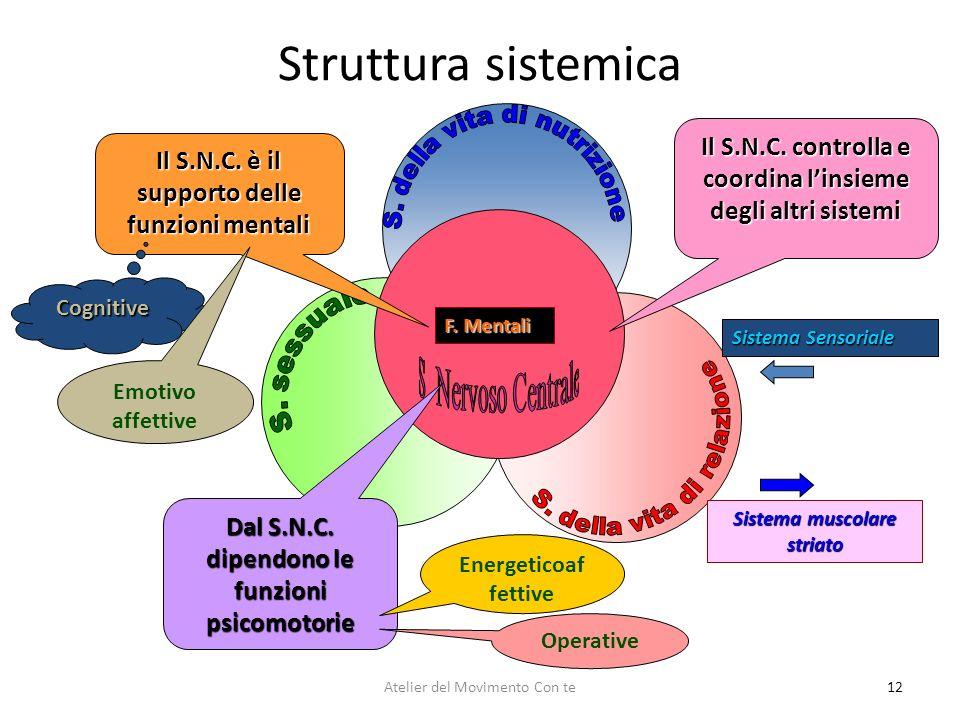 Struttura sistemica S. della vita di nutrizione. Il S.N.C. controlla e coordina l'insieme degli altri sistemi.