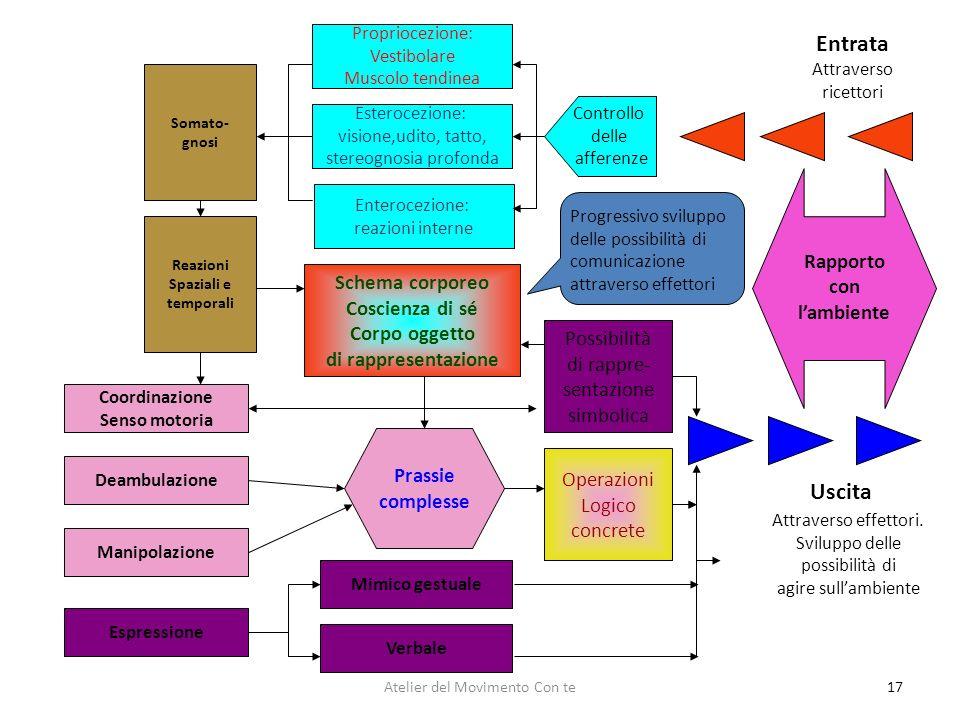 Entrata Uscita Rapporto con l'ambiente Schema corporeo Coscienza di sé