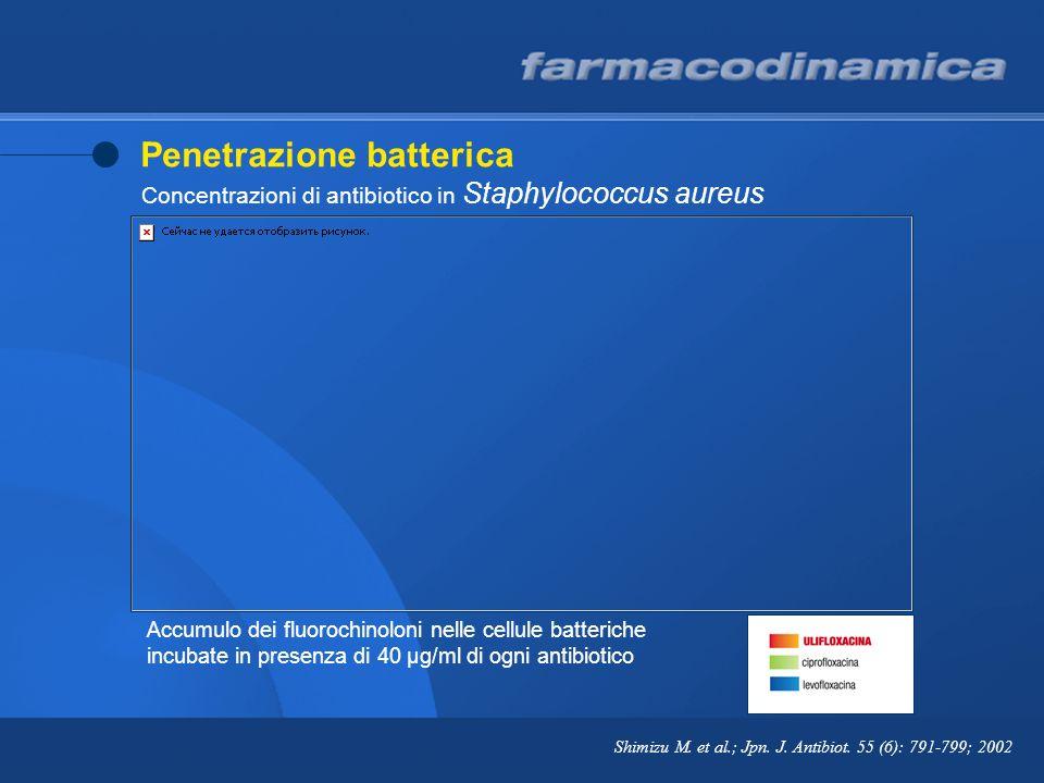 Penetrazione batterica