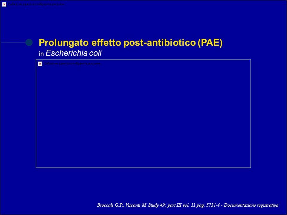Prolungato effetto post-antibiotico (PAE)