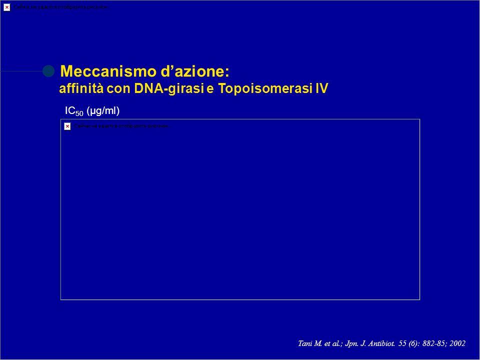 Meccanismo d'azione: affinità con DNA-girasi e Topoisomerasi IV