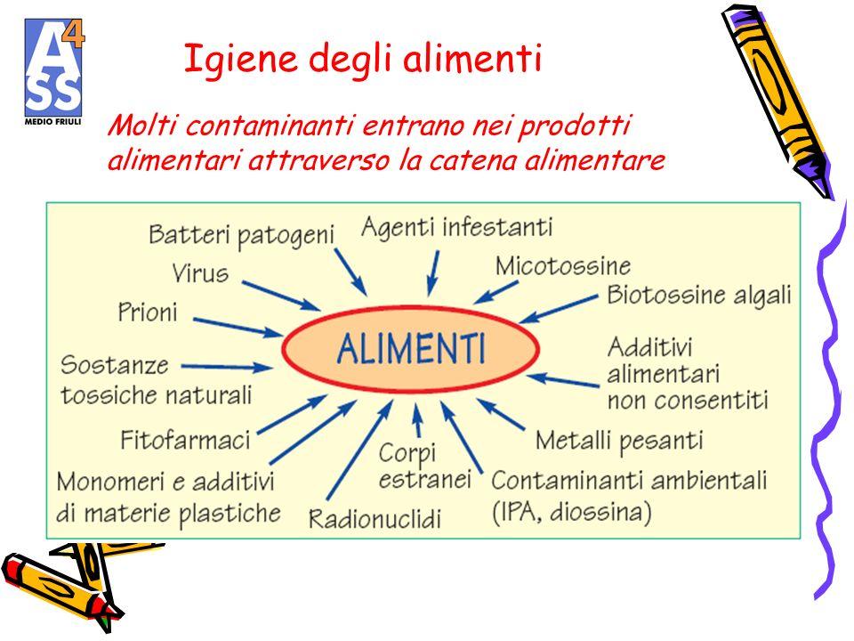 Igiene degli alimenti Molti contaminanti entrano nei prodotti alimentari attraverso la catena alimentare.