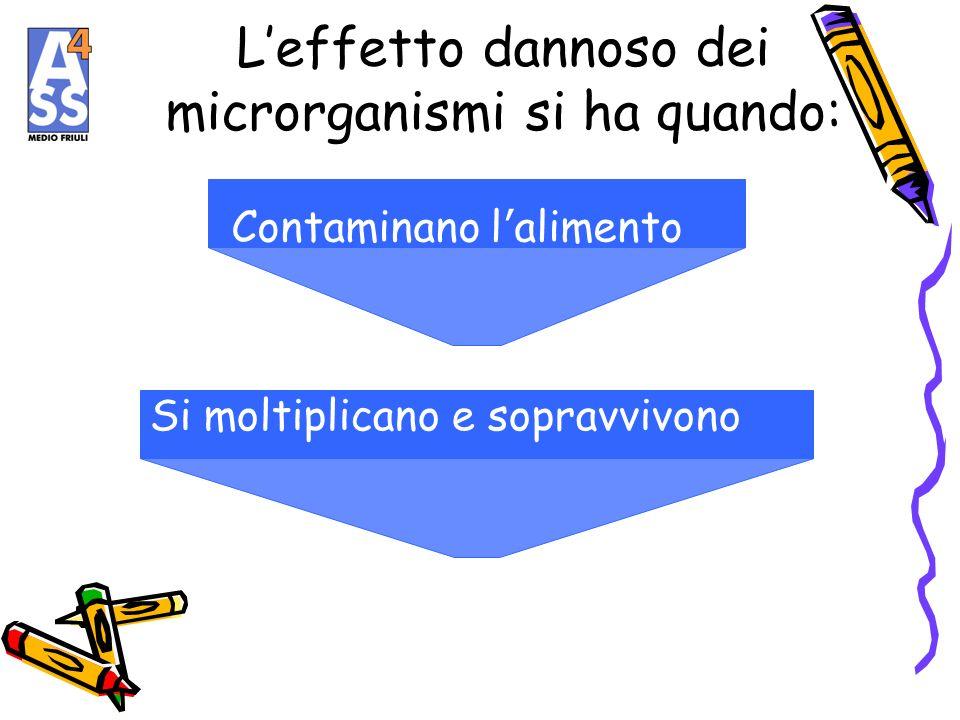 L'effetto dannoso dei microrganismi si ha quando: