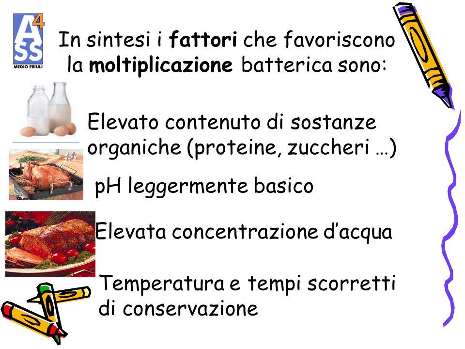 In sintesi i fattori che favoriscono la moltiplicazione batterica sono: