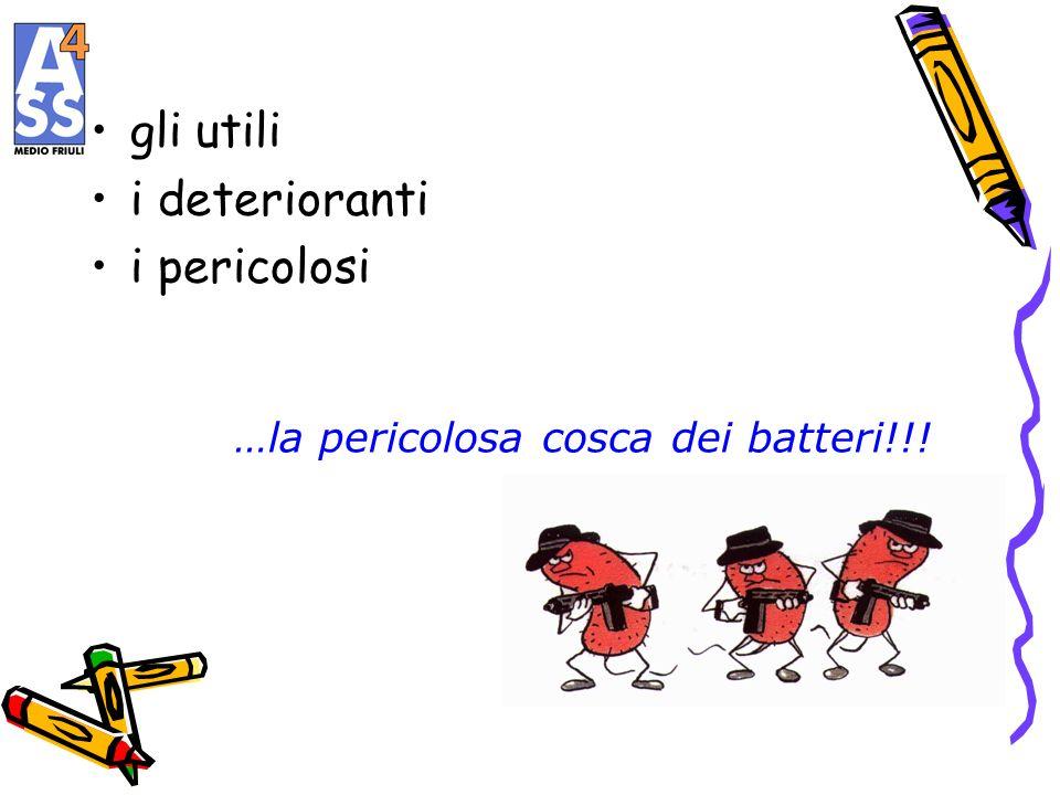 …la pericolosa cosca dei batteri!!!