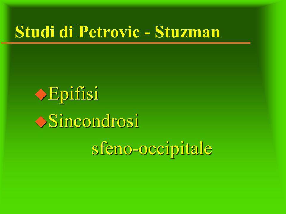 Studi di Petrovic - Stuzman
