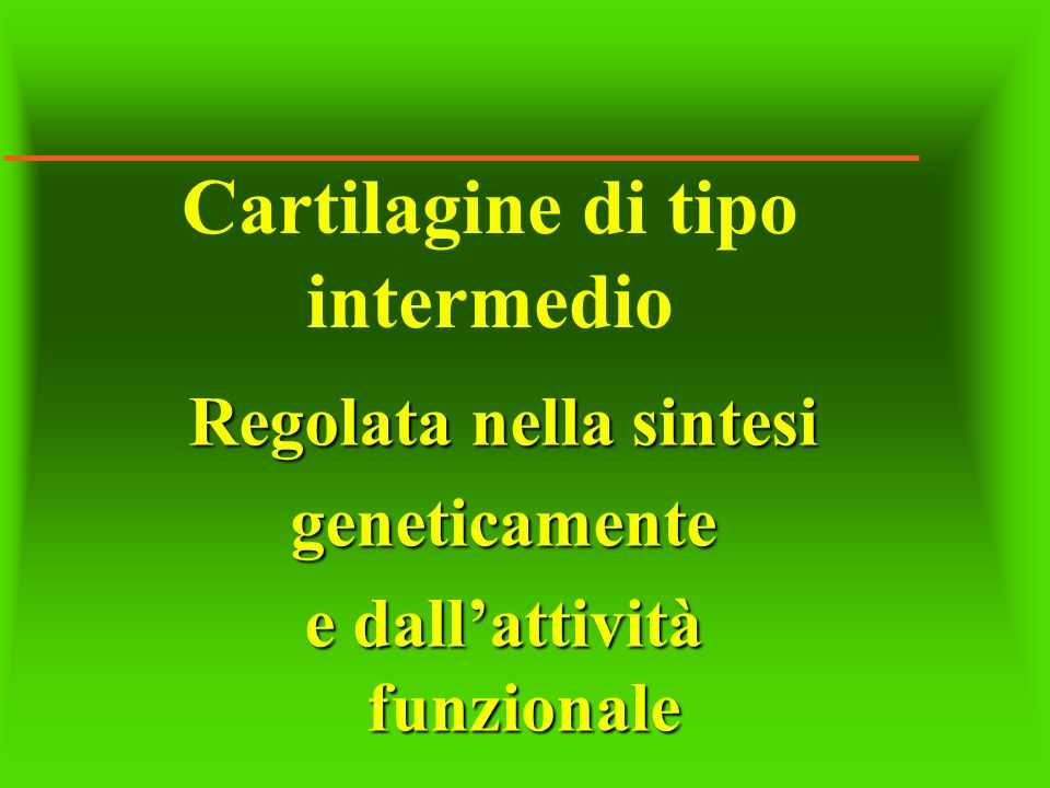 Cartilagine di tipo intermedio