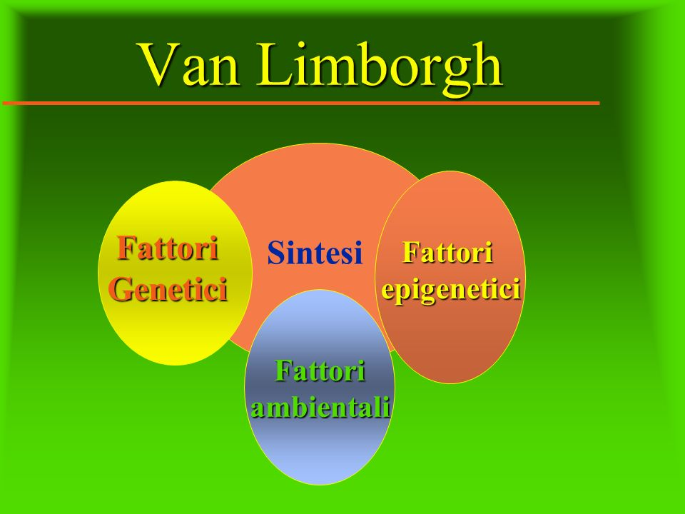 Van Limborgh Fattori Sintesi Genetici Fattori epigenetici Fattori