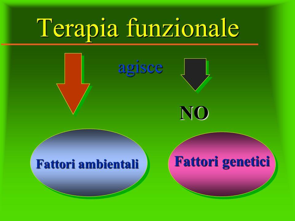 Terapia funzionale agisce NO Fattori genetici Fattori ambientali